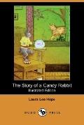 The Story Of A Candy Rabbit (Illustrated Edition)