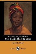 Our Nig: Or, Sketches from the Life of a Free Black (Dodo Press)
