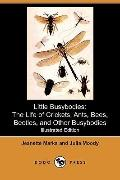 Little Busybodies: The Life of Crickets, Ants, Bees, Beetles, and Other Busybodies (Illustra...