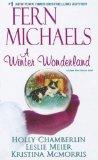 A Winter Wonderland (Wheeler Large Print Book Series)