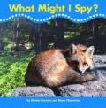 What Might I Spy? : Set Of 6