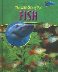 Wild Side of Pet Fish