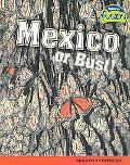 Mexico or Bust! Migration Patterns