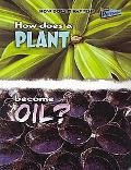 How Does A Plant Become Oil? (How Does It Happen?)