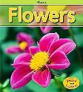 Flowers, Vol. 1