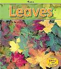 Leaves (Heinemann Read and Learn)