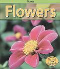 Flowers (Plants)