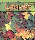 Leaves (Plants)