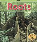 Roots (Plants)