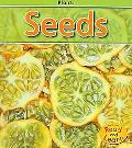 Seeds (Plants)