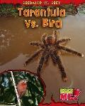 Tarantula vs. Bird (Read Me!)