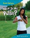 What Is My Pulse?: Blood and Circulation (Inside My Body)