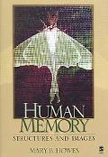 Human Memory Structures And Images