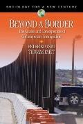 Beyond a Border: The Causes and Consequences of Contemporary Immigration (Sociology for a Ne...