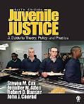 Juvenile Justice A Guide to Theory, Policy, and Practice