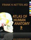 Atlas of Human Anatomy (4th International Edition)