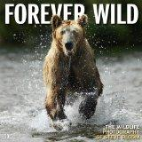 Forever Wild 2012 Wall (calendar)