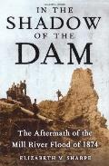 In The Shadow Of The Dam, The Aftermath Of The Mill River Flood Of 1874