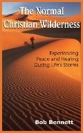 Normal Christian Wilderness Experiencing Peace And Healing During Life's Storms