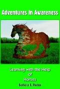 Adventures in Awareness Learning With the Help of Horses