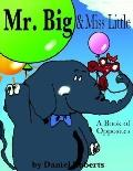 Mr. Big & Miss Little A Book of Opposites