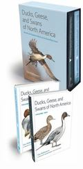 Ducks, Geese, and Swans of North America
