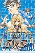Black Cat, Volume 18