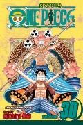 One Piece, Vol. 30