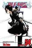 Bleach, Vol. 54