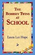 Bobbsey Twins at School