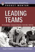 Leading Teams Expert Solutions To Everday Challenges