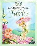 Hidden World of Fairies