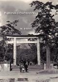 Fujiyama Honeymoon