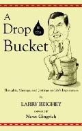 Drop in the Bucket Thoughts, Musings, And Jottings on Life's Experiences