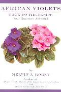 African Violets Back to the Basics Your Questions Answered