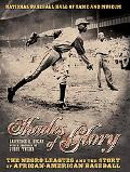 Shades of Glory The Negro Leagues and the Story of African-American Baseball