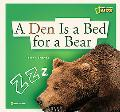 Den Is a Bed for a Bear