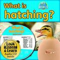 What Is Hatching? [With Paperback Book] (Bobbie Kalman's Leveled Readers: My World: E)