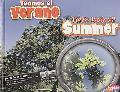 Veamos el Verano: Let's Look at Summer