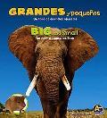 Grandes y Pequenos: Un Libro de Animals Opuesto