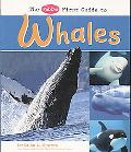 Pebble First Guide to Whales