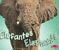 Elefantes/Elephants