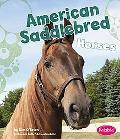American Saddlebred Horses (Pebble Books)