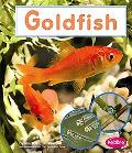 Goldfish (Pebble Books)