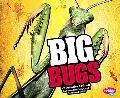 Big Bugs (Pebble Plus)