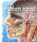 The Human Head (Fact Finders)