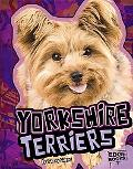 Yorkshire Terriers (Edge Books)