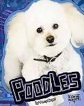 Poodles (Edge Books)