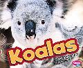 Koalas (Australian Animals)