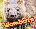 Wombats (Australian Animals)